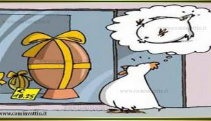 uovo di pasqua - gallina perplessa