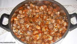 lumache al sugo ricetta barese cazzavun cazzavune