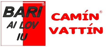Camin Vattin