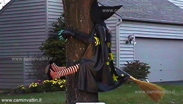 befana-contro-albero