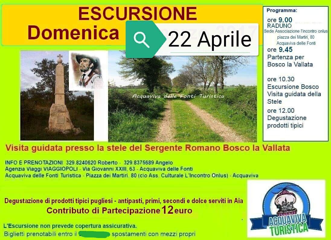 Visita guidata presso la stele del Sergente Romano Bosco la Vallata