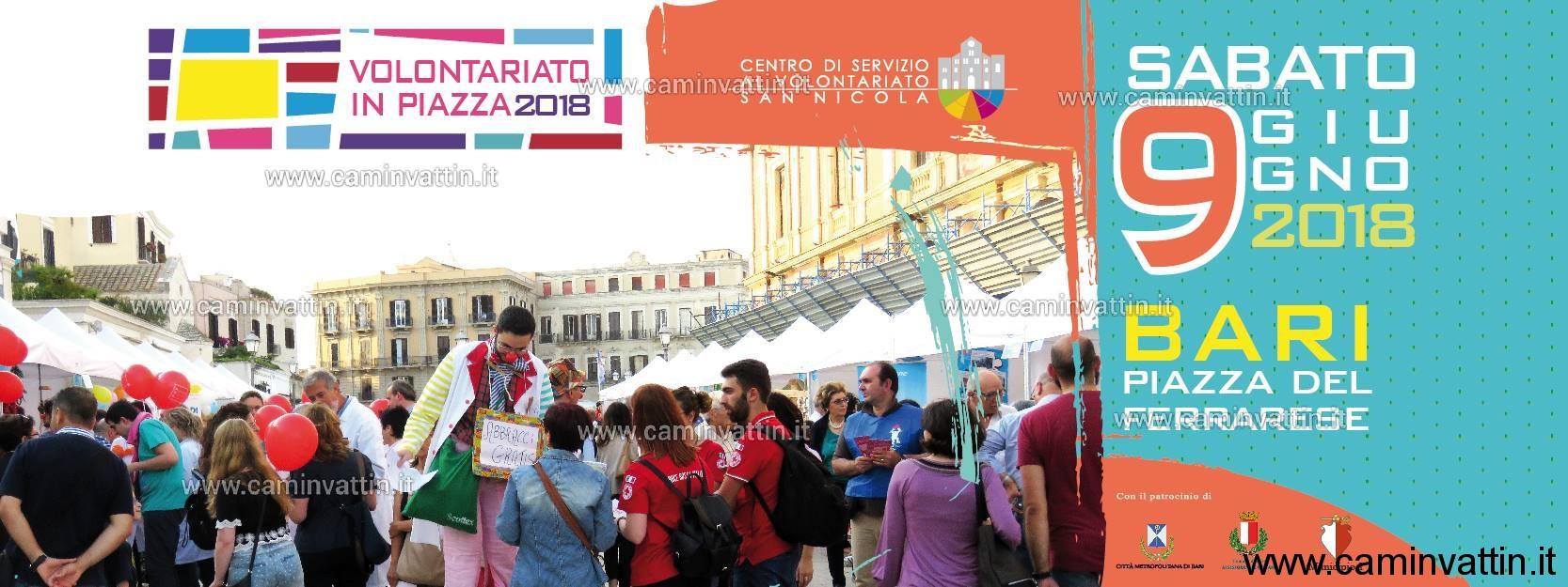 volontariato in piazza 2018
