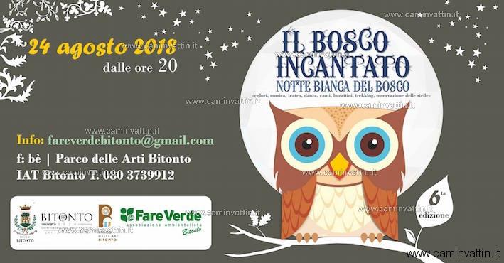 Notte Bianca del Bosco di Bitonto