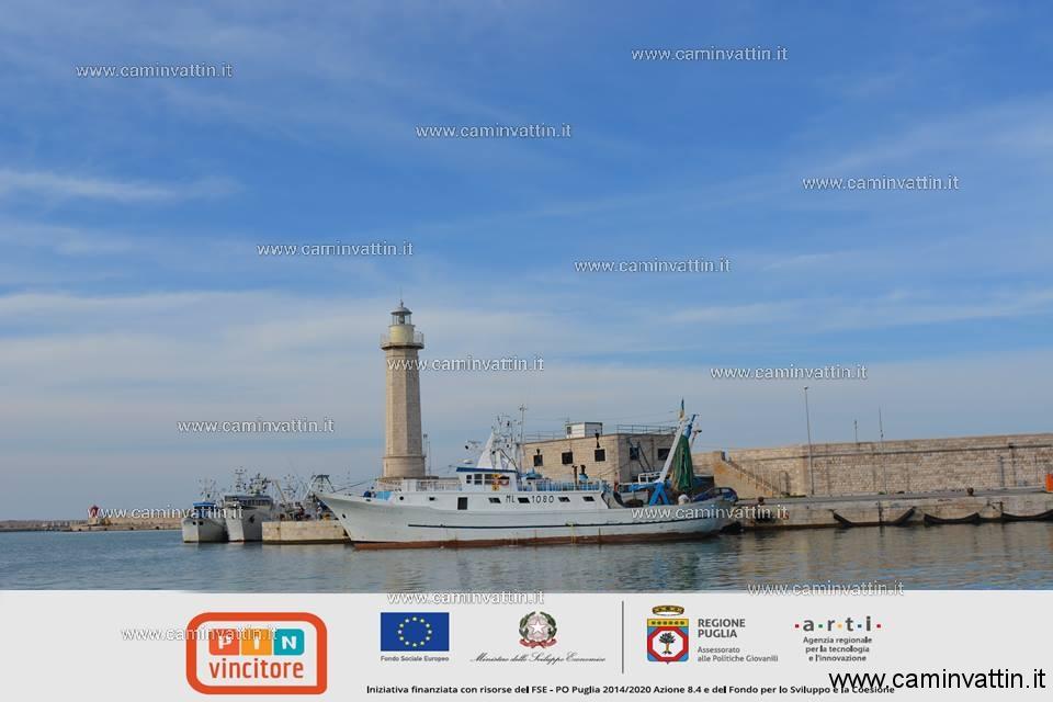 Molfetta e il suo mare un profondo legame con visita del faro e del centro storico