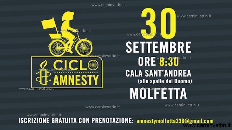 ciclo amnesty molfetta