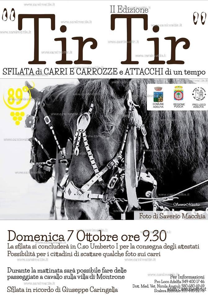 """""""TIR TIR"""" 2ª Sfilata di carri e carrozze d'epoca e attacchi di un tempo in ricordo di Giuseppe Caringella"""