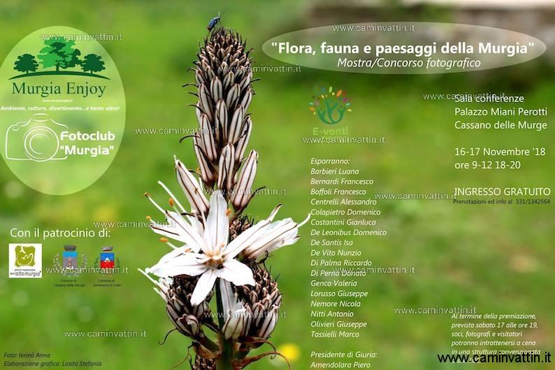 flora fauna e paesaggi della murgia mostra concorso
