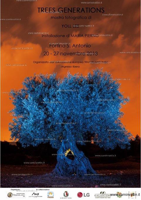 trees generations mostra fotografica