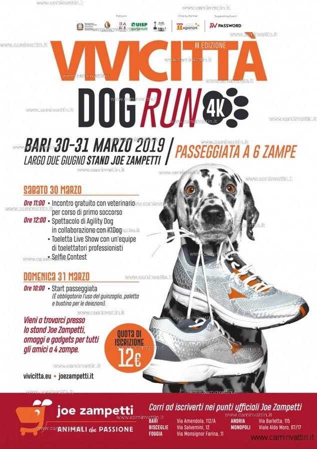 VIVICITTÀ DOG RUN 2019