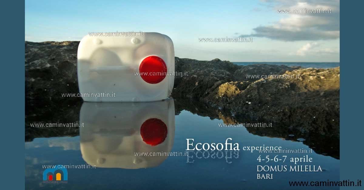 Ecosofia experience