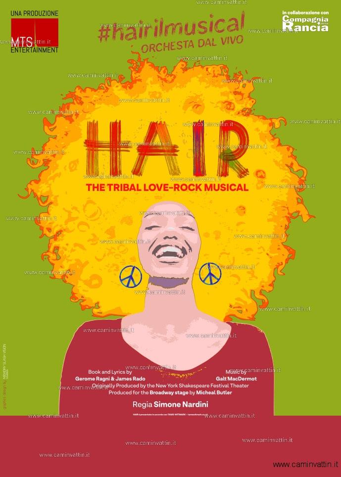 hair il musical teatro team