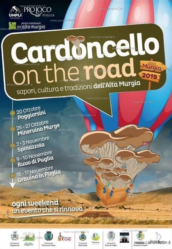 cardoncello on the road 2019