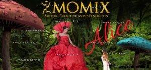 alice momix teatro petruzzelli