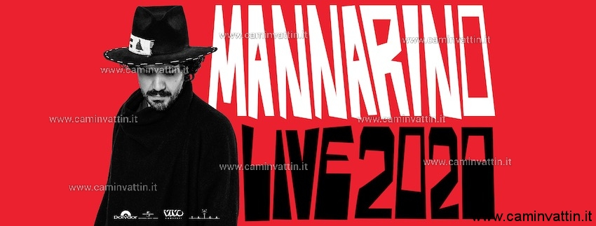 alessandro mannarino concerto bari palaflorio live tour 2020